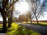 67 Tamarack Circle - Photo 5