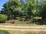 15141 Trap Pond Road - Photo 13