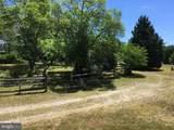 15141 Trap Pond Road - Photo 14