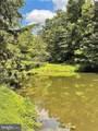 527 Green Tree Drive - Photo 4