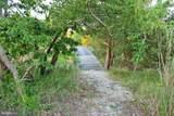 20035 Poplar Hill Creek Lane - Photo 55
