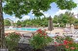 43103 Lake Ridge Place - Photo 58