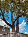 7903 Highpoint Road - Photo 46