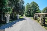 1564 Buck Mountain Road - Photo 53