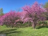 1532 Meadow Branch Avenue - Photo 1