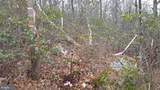 G.N.M. Wilderness Area - Photo 10