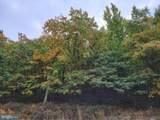 Lot 82 Elderberry - Photo 3