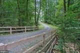 900 Mountain Spring Road - Photo 4