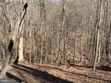 15 Nemacolin Trail - Photo 6