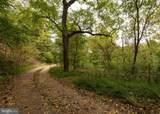 Ike's Crossing Lane - Photo 7