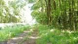 Lot 11 Route 594 (Oak Road) - Photo 14
