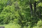 Licking Creek Road-Tract 2 - Photo 4