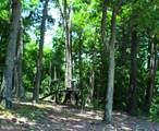 19 Homes At Timber Knoll - Photo 134
