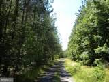 Prim Road - Photo 14