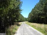 Prim Road - Photo 5