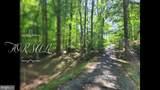 494 Dogwood Drive - Photo 4