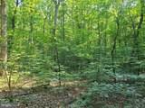 Wilderness Woods Lane - Photo 1