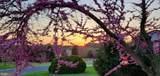 5085 Hickory View Drive - Photo 65