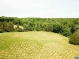 TBD Woodlawn Farm Drive - Photo 10
