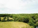 TBD Woodlawn Farm Drive - Photo 3