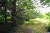 TBD Woodlawn Farm Drive - Photo 37
