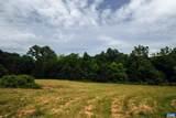 TBD Woodlawn Farm Drive - Photo 46