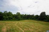 TBD Woodlawn Farm Drive - Photo 49