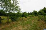 TBD Woodlawn Farm Drive - Photo 58