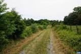 TBD Woodlawn Farm Drive - Photo 60