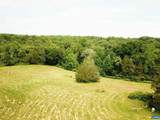 TBD Woodlawn Farm Drive - Photo 9