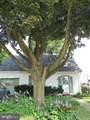 8023 Burholme Avenue - Photo 5