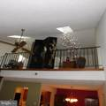 230 Boothby Court - Photo 9