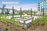 3041 Herb Garden Drive - Photo 42