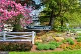 330 Lakeside Drive - Photo 49