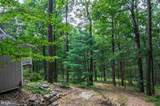 12617 Cardinal Forest Drive - Photo 4