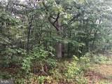 53.5 AC Off Timber Ridge Rd - Photo 15