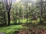 53.5 AC Off Timber Ridge Rd - Photo 19
