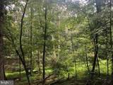 53.5 AC Off Timber Ridge Rd - Photo 6