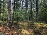 53.5 AC Off Timber Ridge Rd - Photo 7