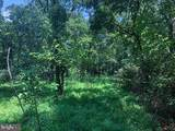53.5 AC Off Timber Ridge Rd - Photo 9