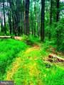 11408 Notchcliff Road - Photo 5