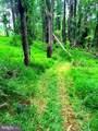 11408 Notchcliff Road - Photo 7
