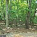 N Timber Tribe - Photo 17