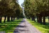27391 Southside Island Creek Road - Photo 7