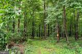 89.7 ACRES Speedwell Forge Road - Photo 2