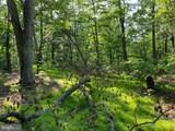 Bear Run Road - Photo 1