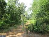 30771 White Oak Road - Photo 36