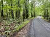 Bushy Ridge Drive - Photo 3