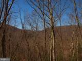 Flower Hill Road, Circleville, Wv (Off Rt 19) - Photo 8