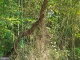 Nicotine Trail - Photo 3